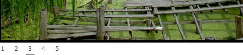 easy-image-jquery-slideshow